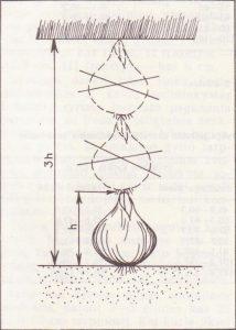 Sodinimo gylis
